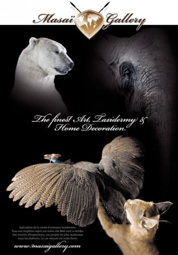 Jours-de-chasse-2011