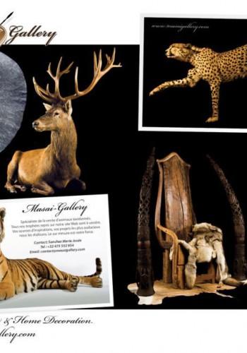 Magic-safari-lodge-2012