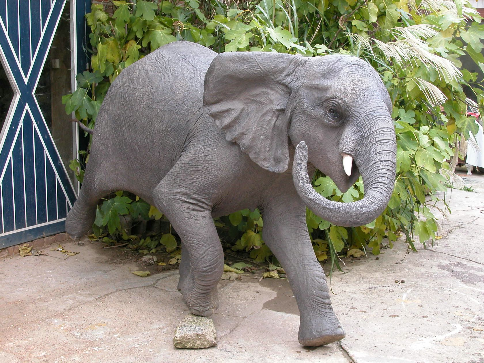African Elephant Polyester Color Natural Size Medium